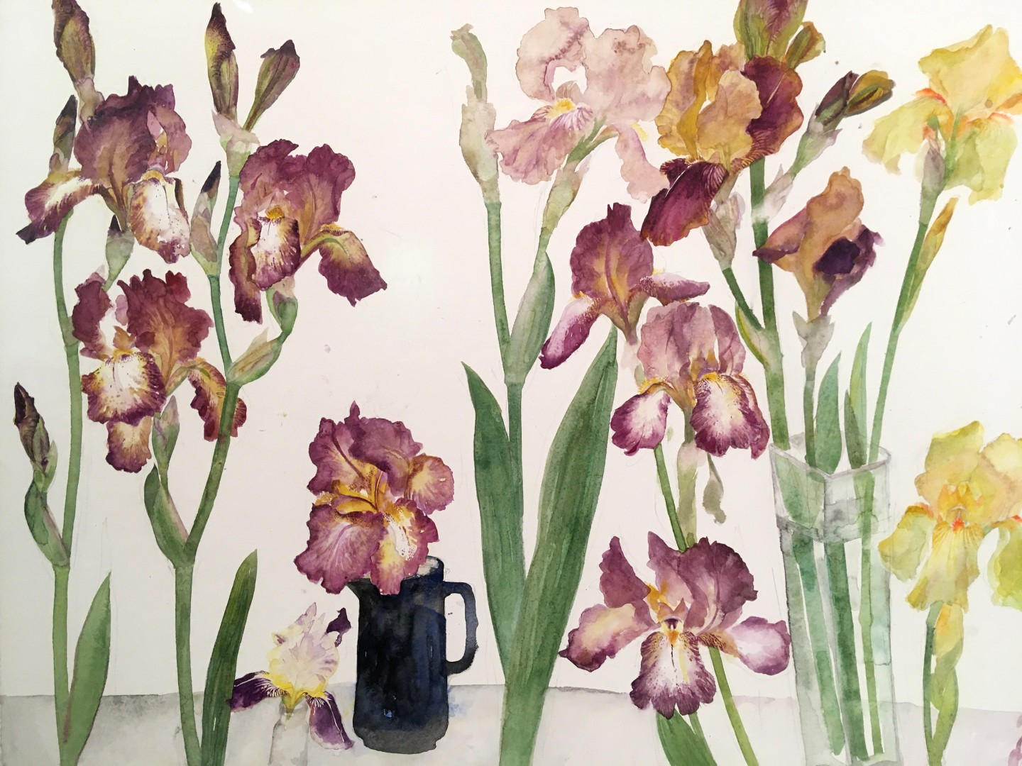 Irises, Brown & Yellow