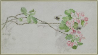 Apple Blossom and Bees, Unknown