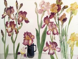 Irises, Brown & Yellow, c. 1990